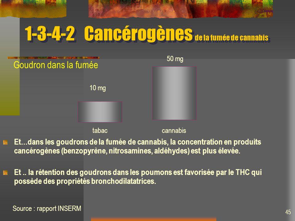 1-3-4-2Cancérogènes de la fumée de cannabis Et…dans les goudrons de la fumée de cannabis, la concentration en produits cancérogènes (benzopyrène, nitrosamines, aldéhydes) est plus élevée.
