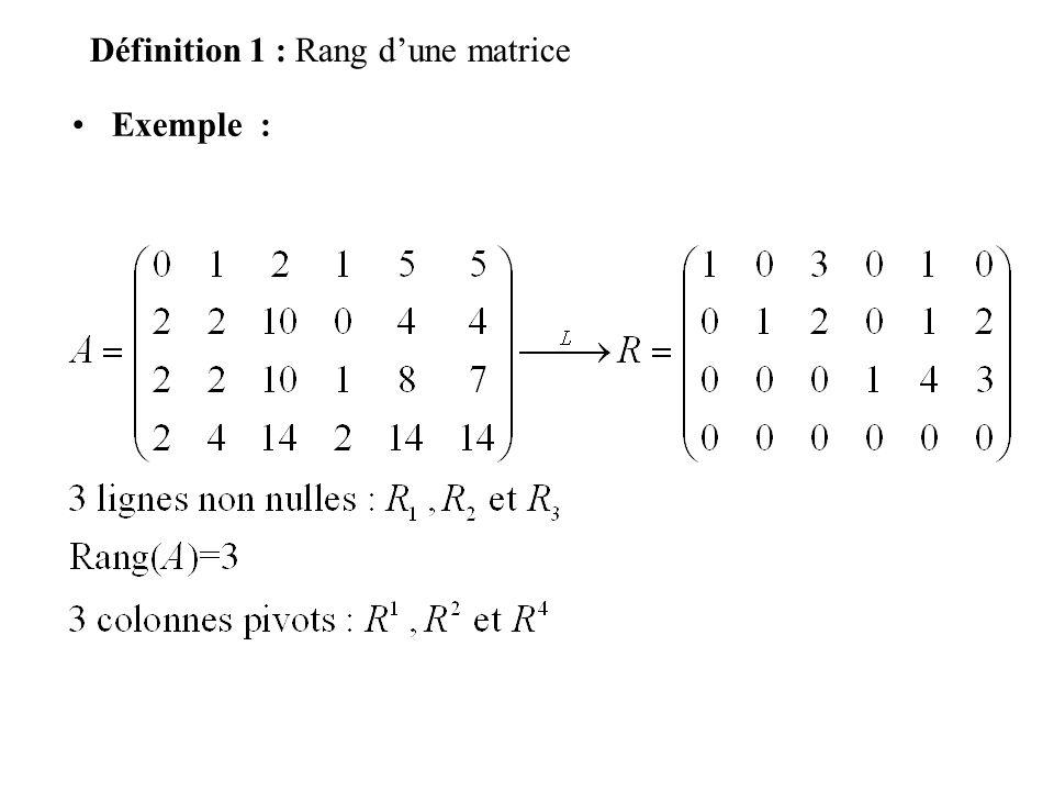 Définition 1 : p=3 inconnues x 1, x 2 et x 3 n=2 équations n=2 constantes -5 et 4 nxp=2x3=6 coefficients p=2 inconnues x 1 et x 2 n=3 équations n=3 constantes 2, 0 et 4 nxp=3x2=6 coefficients