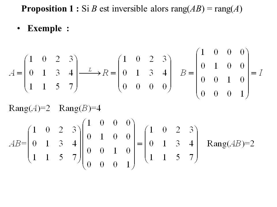 Définition 4 : La somme des deux premières équations donne 2x 1 =2 doù x 1 =1.
