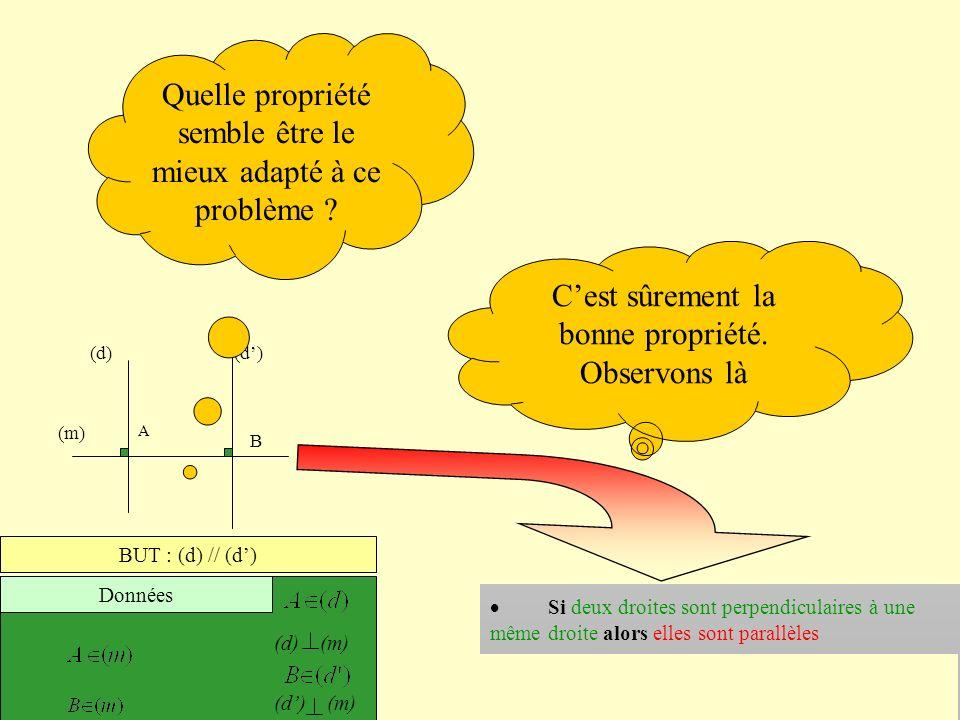 (m) A B (d) BUT : (d) // (d) Données (d) (m) Comment démontrer que deux droites sont parallèles Si deux droites sont symétriques par rapport à un poin
