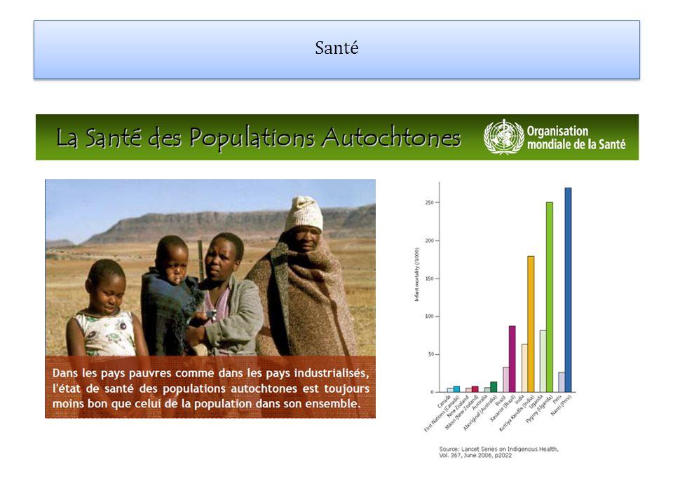 Suicides Les Guarani se suicident parce quils nont pas de terre.