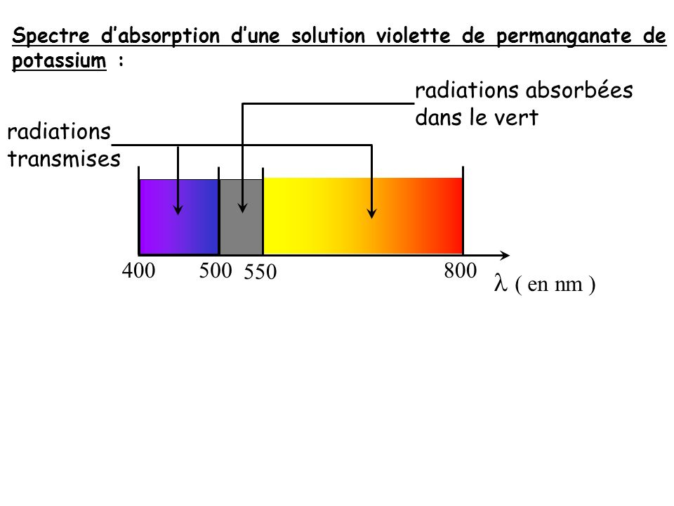 Spectre dabsorption dune solution violette de permanganate de potassium : 400550 500 800 ( en nm ) radiations transmises radiations absorbées dans le vert