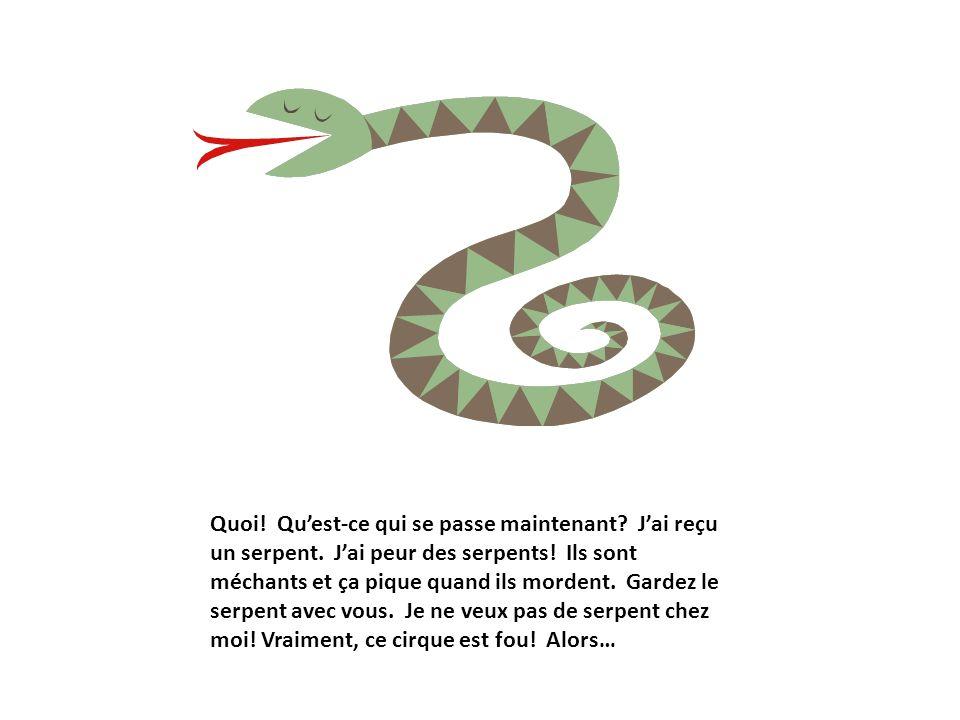 Quoi! Quest-ce qui se passe maintenant? Jai reçu un serpent. Jai peur des serpents! Ils sont méchants et ça pique quand ils mordent. Gardez le serpent