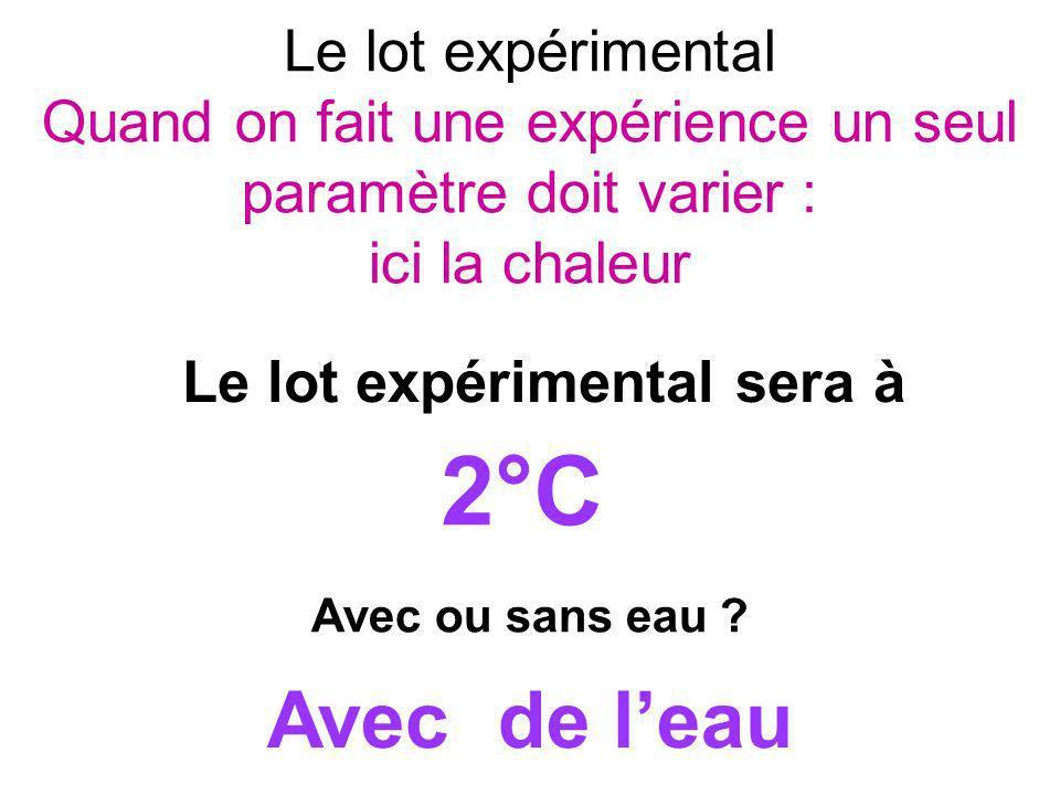 Le lot expérimental Quand on fait une expérience un seul paramètre doit varier : ici la chaleur Le lot expérimental sera à 2°C Avec de leau Avec ou sa