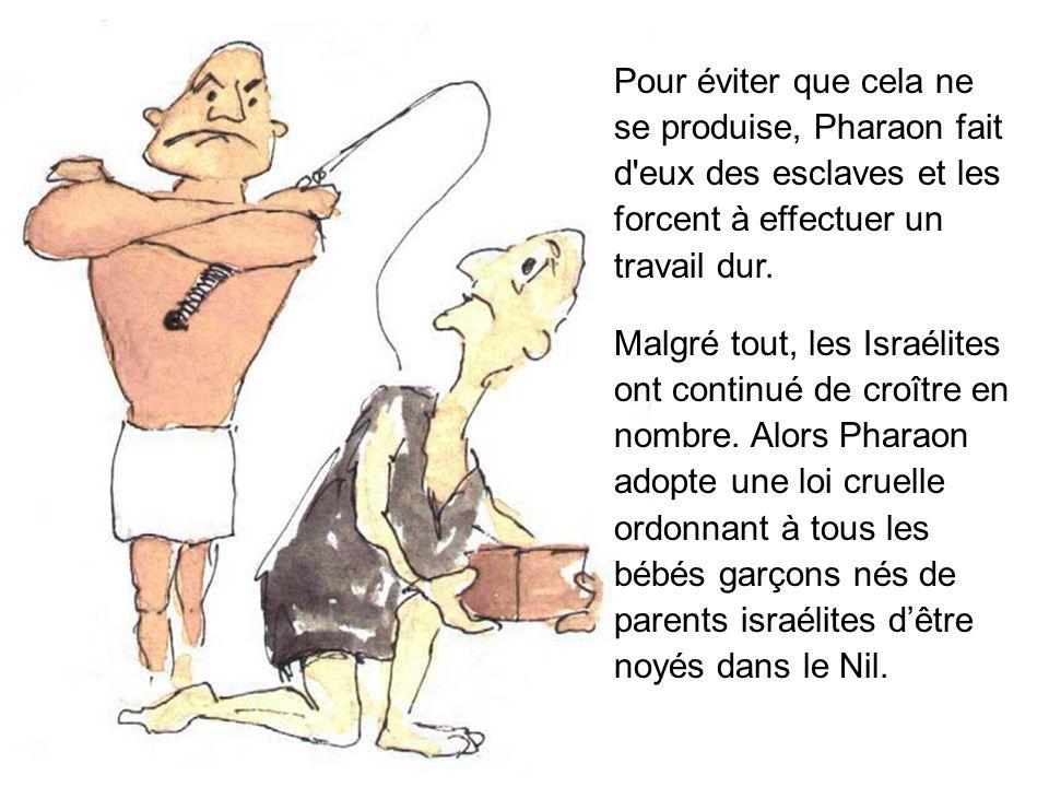 Pour éviter que cela ne se produise, Pharaon fait d eux des esclaves et les forcent à effectuer un travail dur.