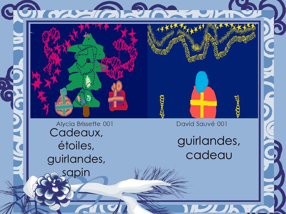 Cadeaux, étoiles, guirlandes, sapin guirlandes, cadeau Alycia Brissette 001David Sauvé 001