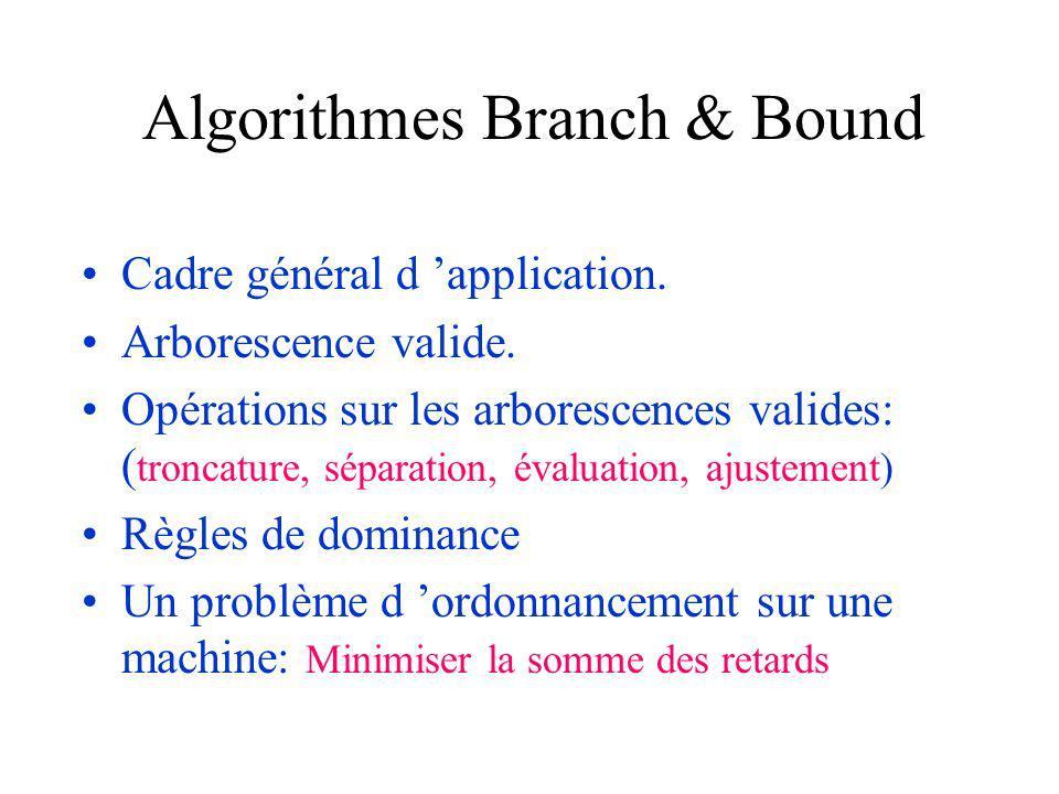 Algorithmes Branch & Bound Cadre général d application.