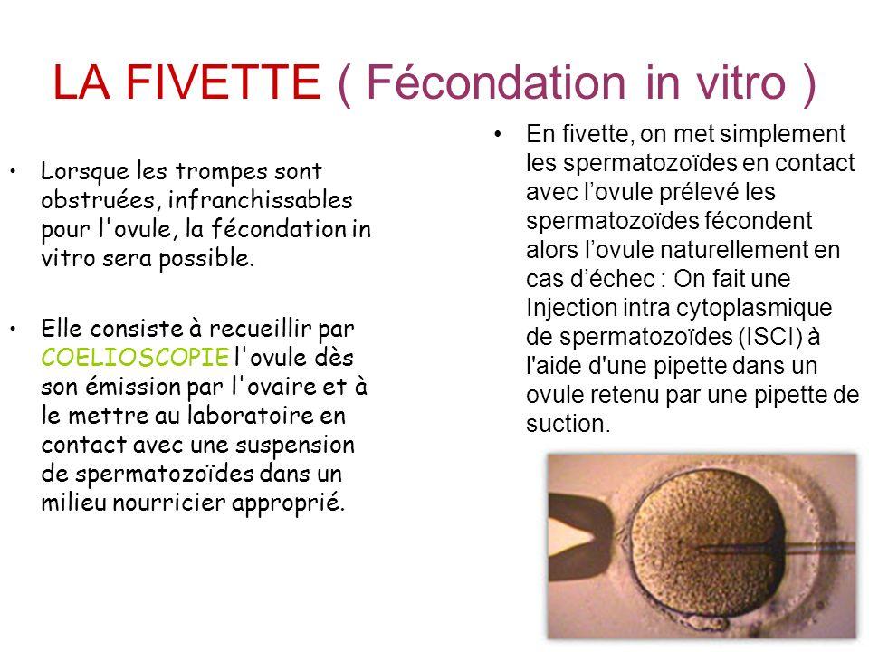 LA FIVETTE ( Fécondation in vitro ) Lorsque les trompes sont obstruées, infranchissables pour l'ovule, la fécondation in vitro sera possible. Elle con