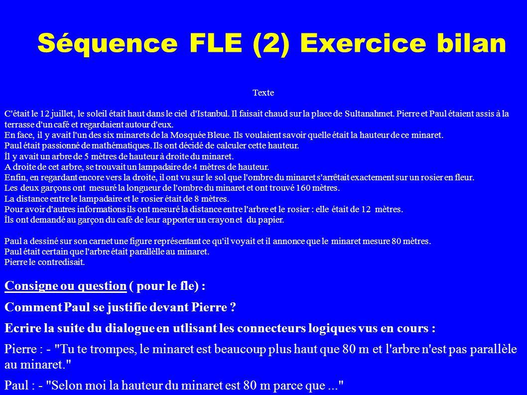 Séquence FLE (2) Exercice bilan Texte C était le 12 juillet, le soleil était haut dans le ciel d Istanbul.
