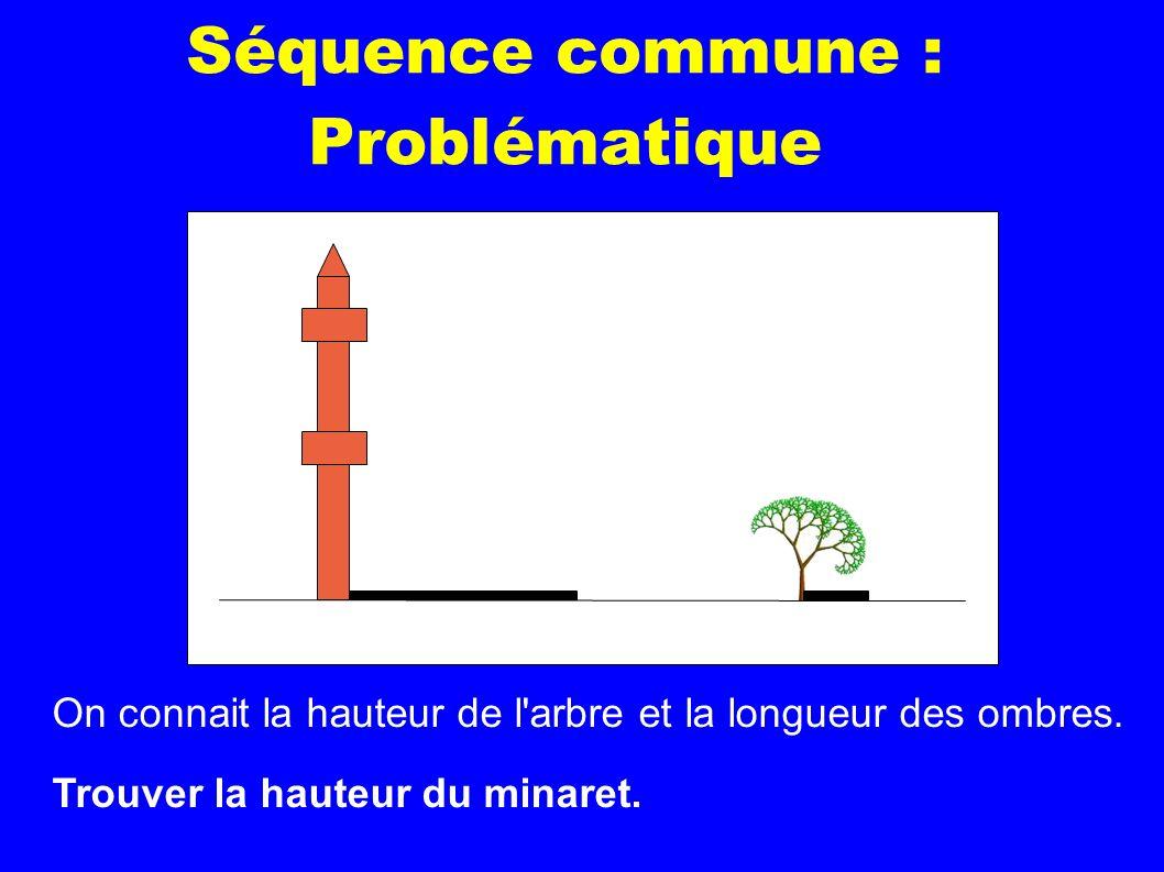 Séquence commune : Problématique On connait la hauteur de l'arbre et la longueur des ombres. Trouver la hauteur du minaret.