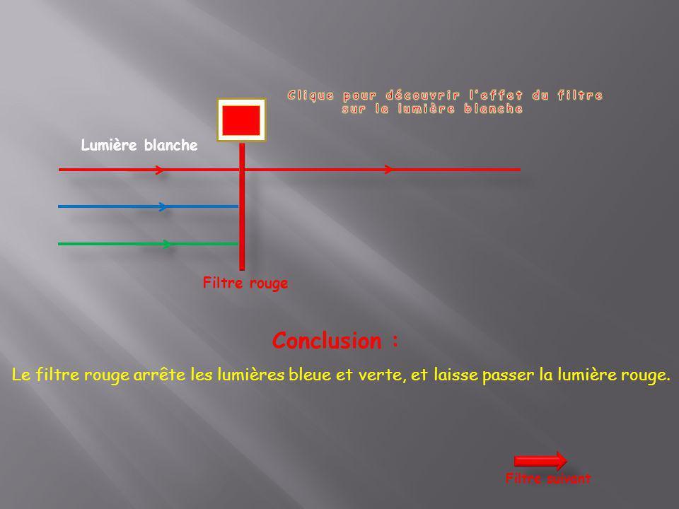 Lumière blanche Filtre rouge Conclusion : Le filtre rouge arrête les lumières bleue et verte, et laisse passer la lumière rouge. Filtre suivant