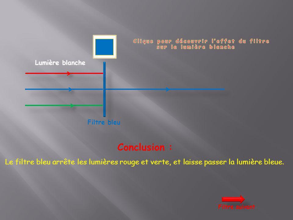 Lumière blanche Filtre bleu Conclusion : Le filtre bleu arrête les lumières rouge et verte, et laisse passer la lumière bleue. Filtre suivant