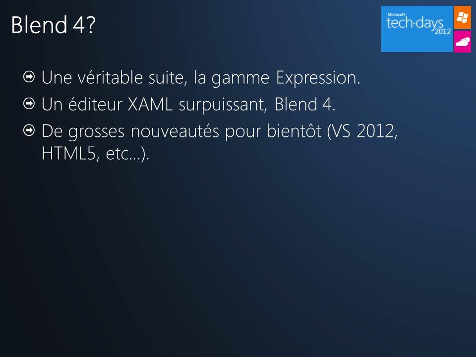 Une véritable suite, la gamme Expression. Un éditeur XAML surpuissant, Blend 4.