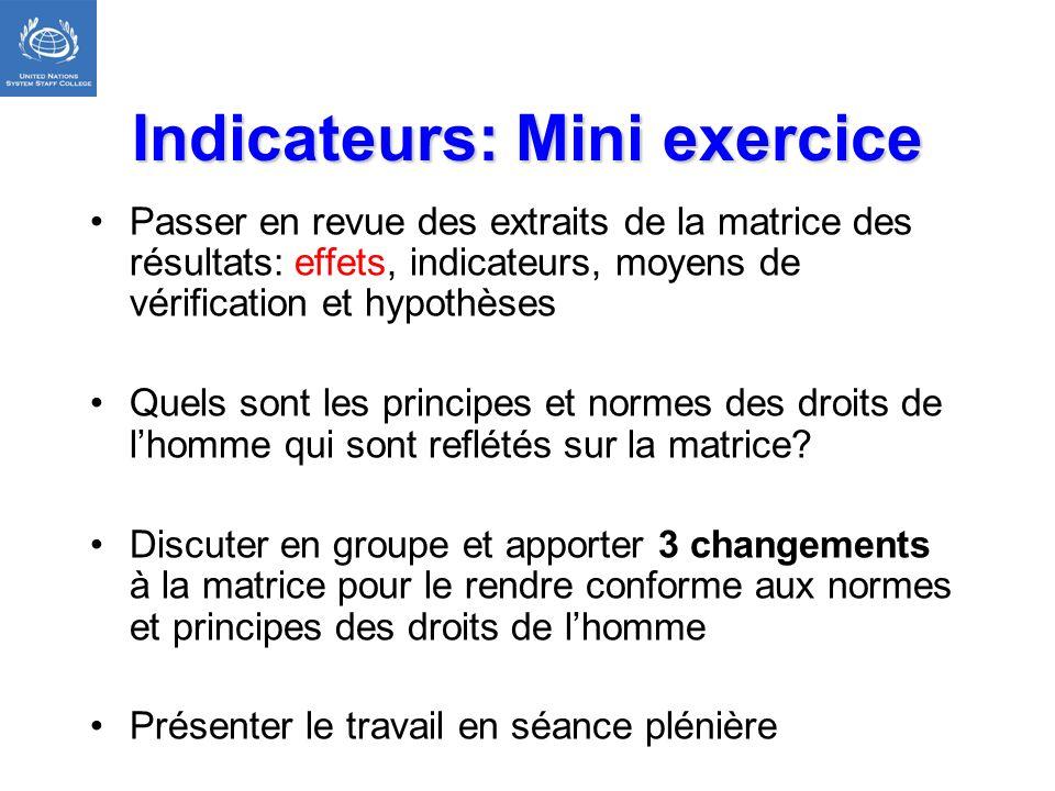 Indicateurs: Mini exercice Passer en revue des extraits de la matrice des résultats: effets, indicateurs, moyens de vérification et hypothèses Quels s