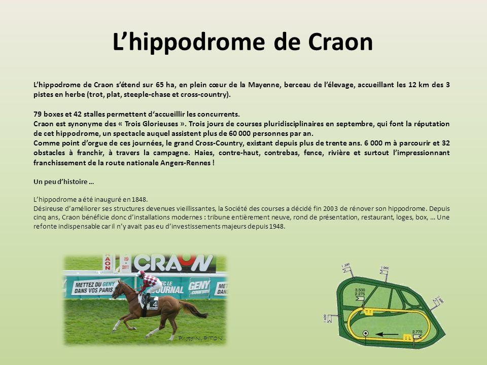 Lhippodrome de Maisons-Laffitte Lhippodrome se situe à Maisons-Laffitte, dans le département des Yvelines. C'est un hippodrome de galop avec une piste