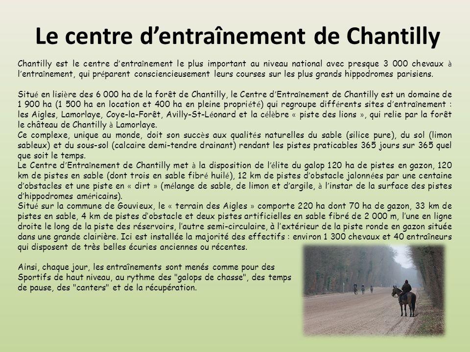 Le centre dentraînement de Chantilly Chantilly est le centre d entra î nement le plus important au niveau national avec presque 3 000 chevaux à l entra î nement, qui pr é parent consciencieusement leurs courses sur les plus grands hippodromes parisiens.