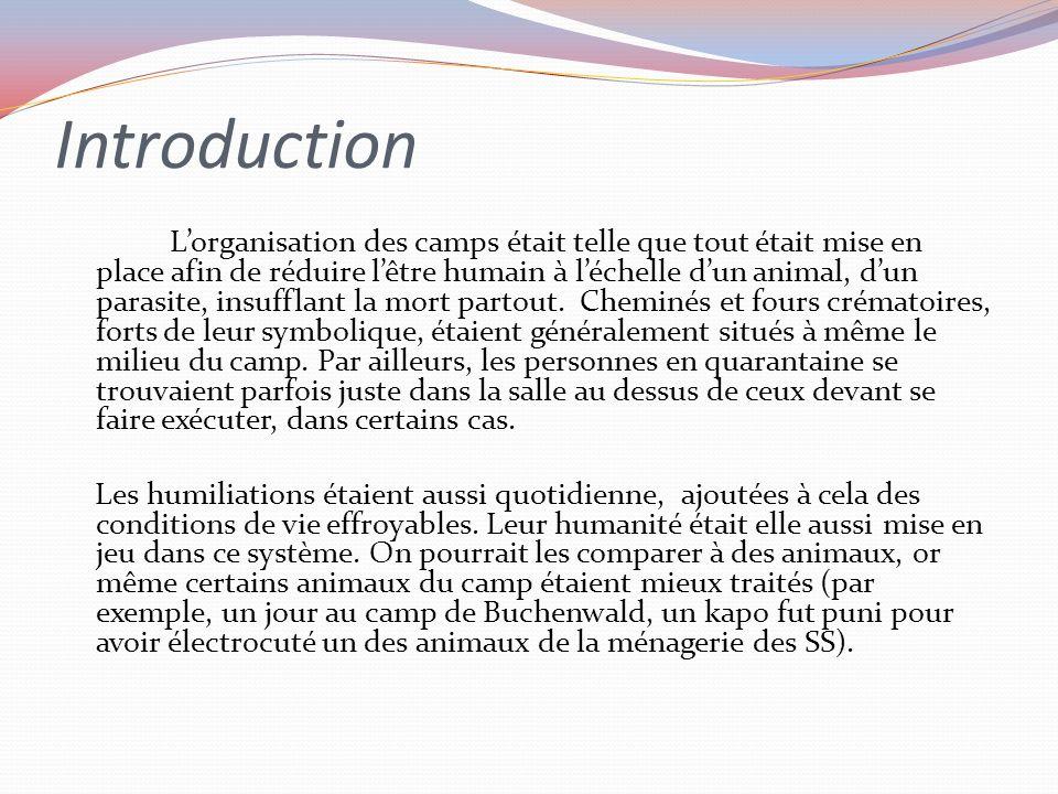 Introduction Lorganisation des camps était telle que tout était mise en place afin de réduire lêtre humain à léchelle dun animal, dun parasite, insufflant la mort partout.