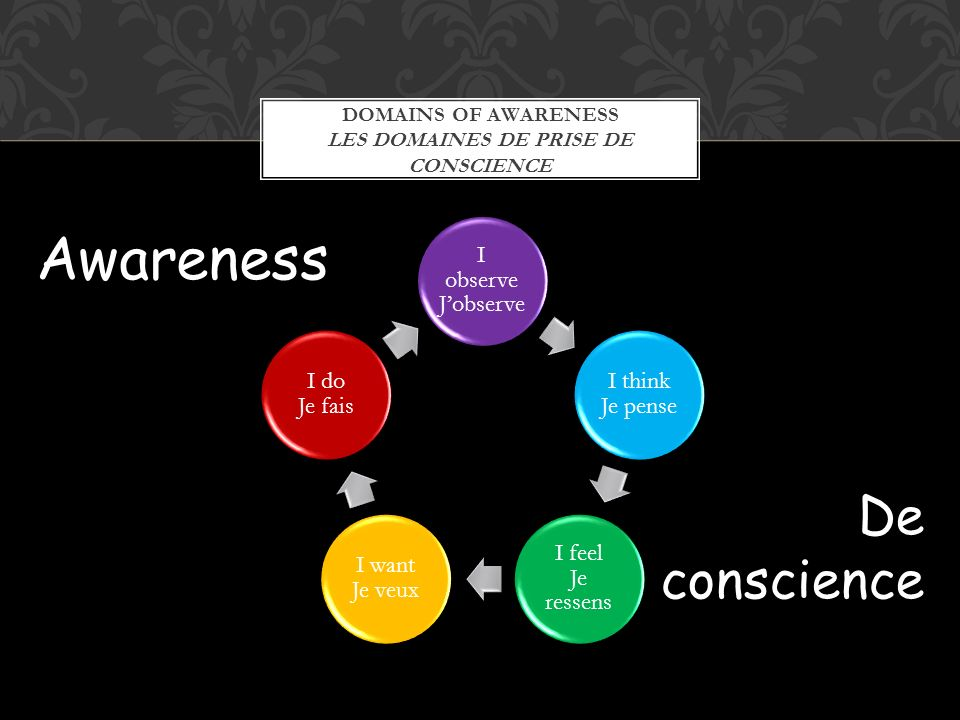 DOMAINS OF AWARENESS LES DOMAINES DE PRISE DE CONSCIENCE I observe Jobserve I think Je pense I feel Je ressens I want Je veux I do Je fais Awareness D