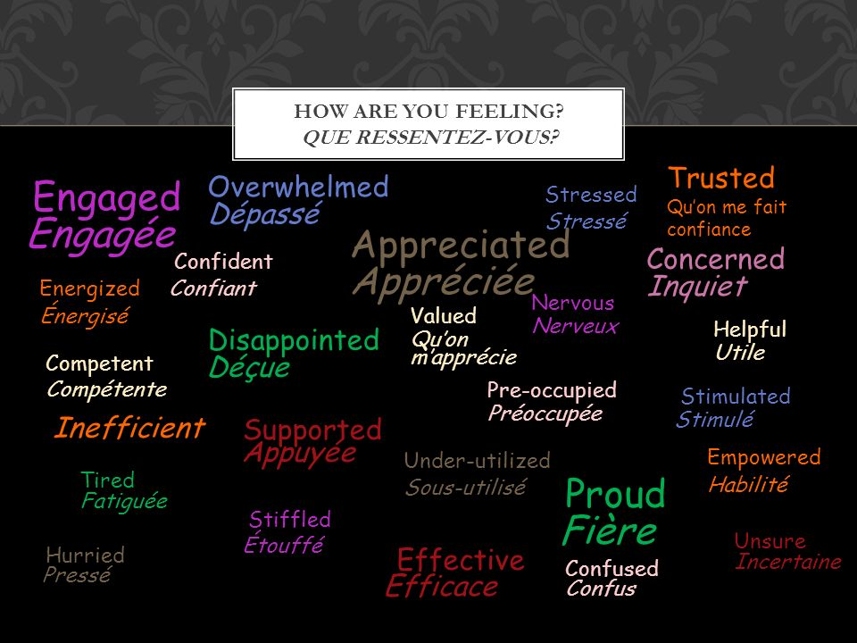 HOW ARE YOU FEELING? QUE RESSENTEZ-VOUS? Confident Appreciated Valued Supported Concerned Pre-occupied Stressed Under-utilized Engaged Overwhelmed Ner