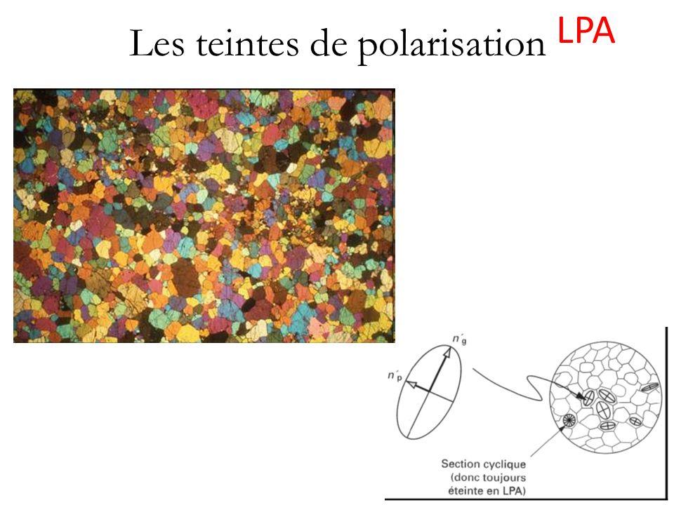 Les teintes de polarisation LPA