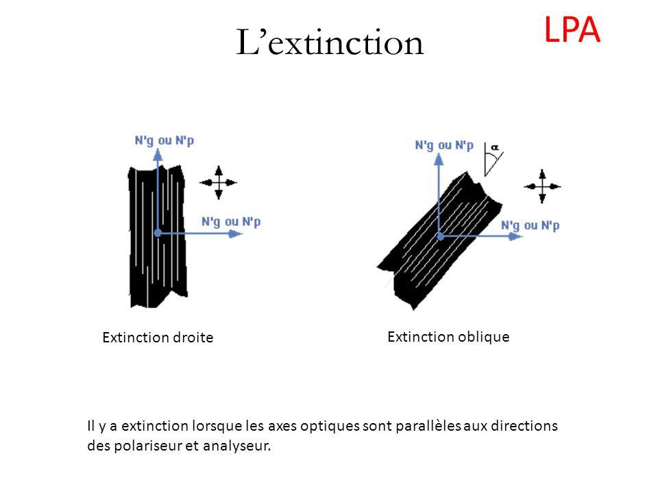 Lextinction Il y a extinction lorsque les axes optiques sont parallèles aux directions des polariseur et analyseur. Extinction droite Extinction obliq
