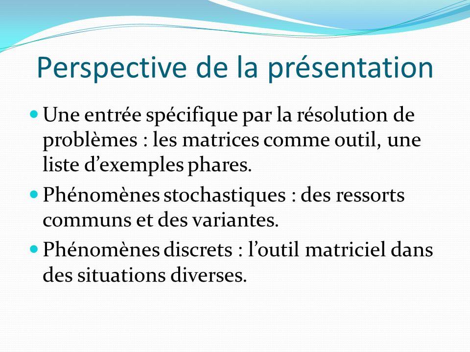 Perspective de la présentation Une entrée spécifique par la résolution de problèmes : les matrices comme outil, une liste dexemples phares.