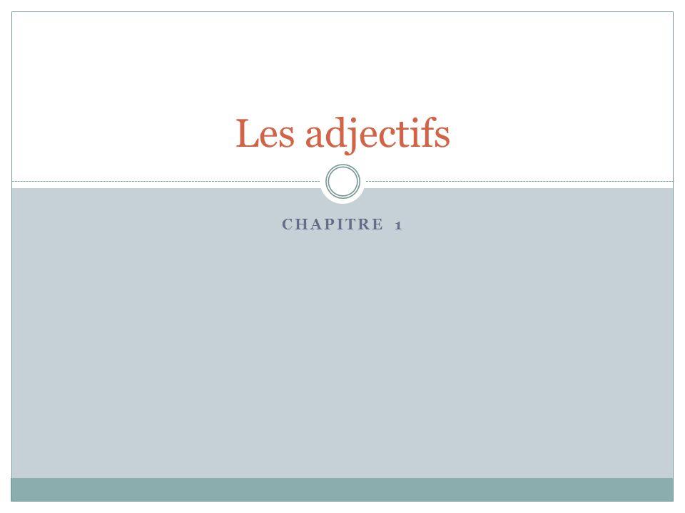 CHAPITRE 1 Les adjectifs