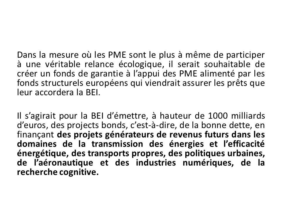 Dans la mesure où les PME sont le plus à même de participer à une véritable relance écologique, il serait souhaitable de créer un fonds de garantie à
