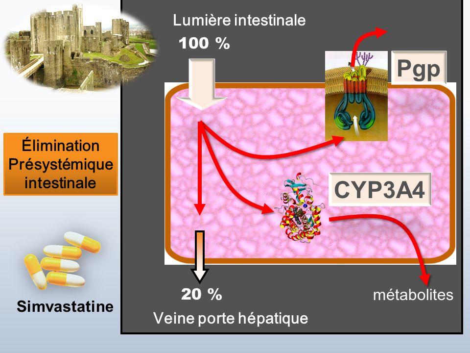 Jean-Louis Brazier - 2 JUIN 2010 Veine porte hépatique Lumière intestinale métabolites Élimination Présystémique intestinale Simvastatine 100 % 20 % P