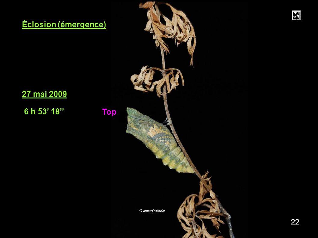 27.05. 05h 6 14 21 27 mai 2009 5 h 06 14 © Bernard Schmeltz