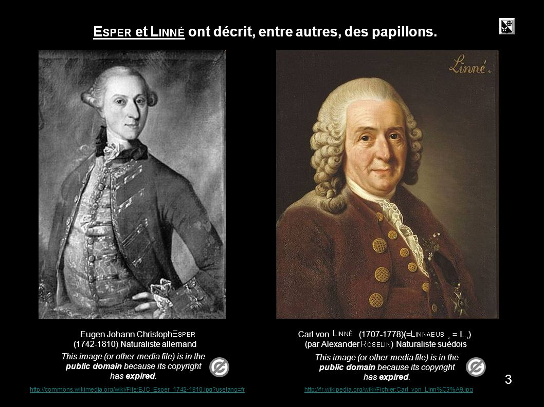 Carl von (1707-1778)(=, = L.,) (par Alexander ) Naturaliste suédois This image (or other media file) is in the public domain because its copyright has expired.