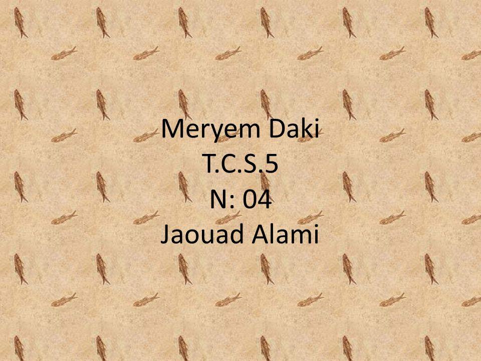 Meryem Daki T.C.S.5 N: 04 Jaouad Alami