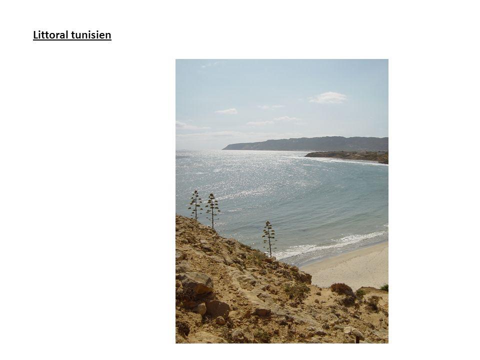 Littoral tunisien
