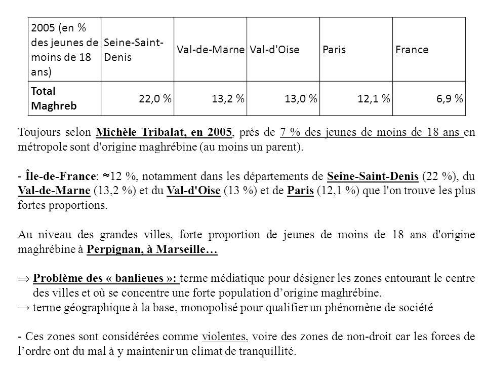 2005 (en % des jeunes de moins de 18 ans) Seine-Saint- Denis Val-de-MarneVal-d'OiseParisFrance Total Maghreb 22,0 %13,2 %13,0 %12,1 %6,9 % Toujours se