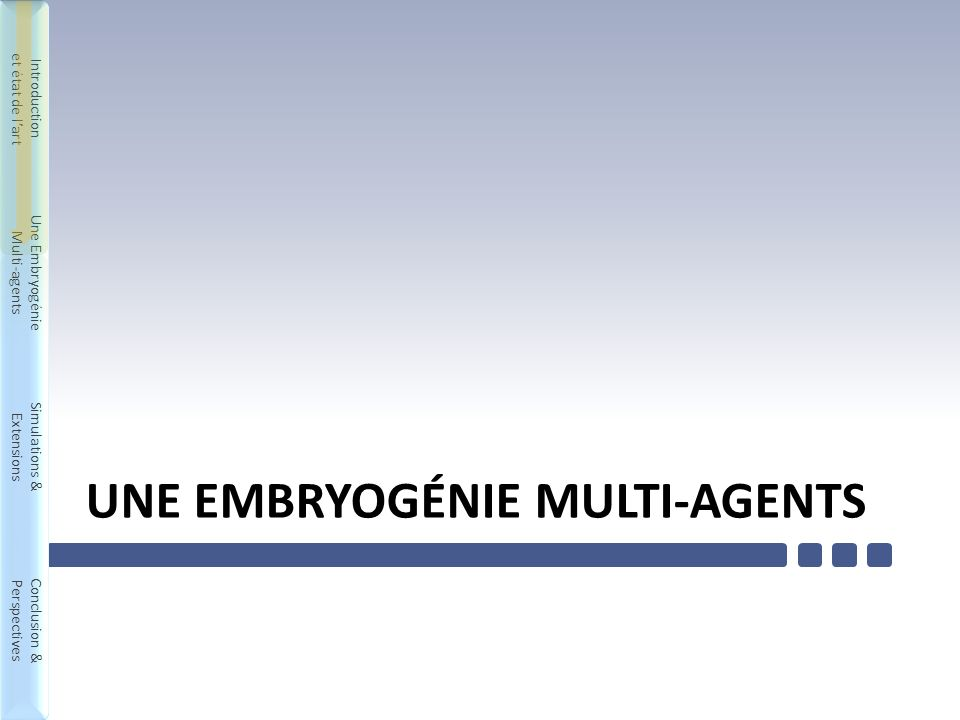 Introduction et état de lart Une Embryogénie Multi-agents Simulations & Extensions Conclusion & Perspectives Introduction et état de lart Une Embryogénie Multi-agents Simulations & Extensions Conclusion & Perspectives UNE EMBRYOGÉNIE MULTI-AGENTS 12