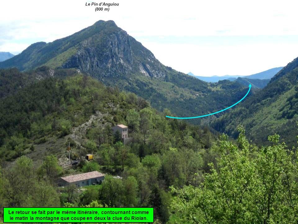 Le retour se fait par le même itinéraire, contournant comme le matin la montagne que coupe en deux la clue du Riolan.