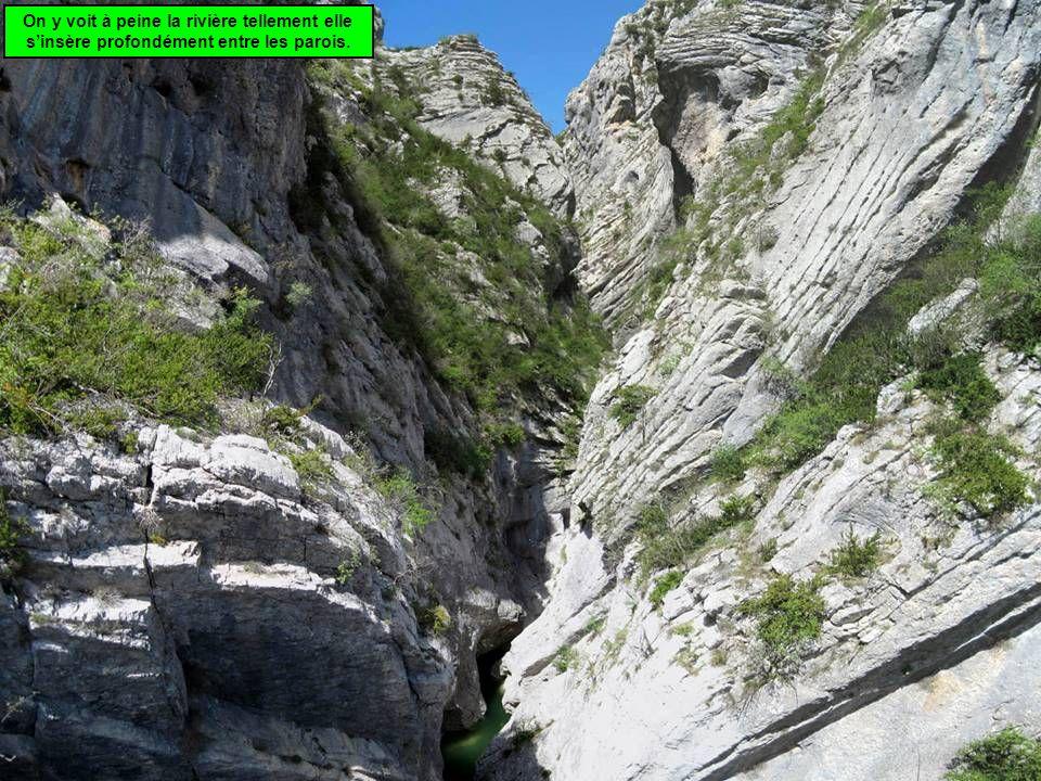 Vient alors lessentiel de la promenade, une montée très progressive des gorges de lEstrech, dans un cadre tour à tour sylvestre et rocheux.