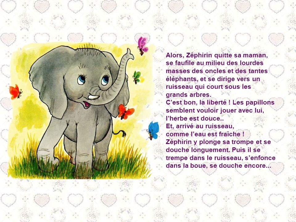 Zéphirin est le fils de Zéphirine, la grande éléphante (je parie que vous vous en seriez doutés !) Jusqualors, Zéphirine la gardé près delle, mais auj
