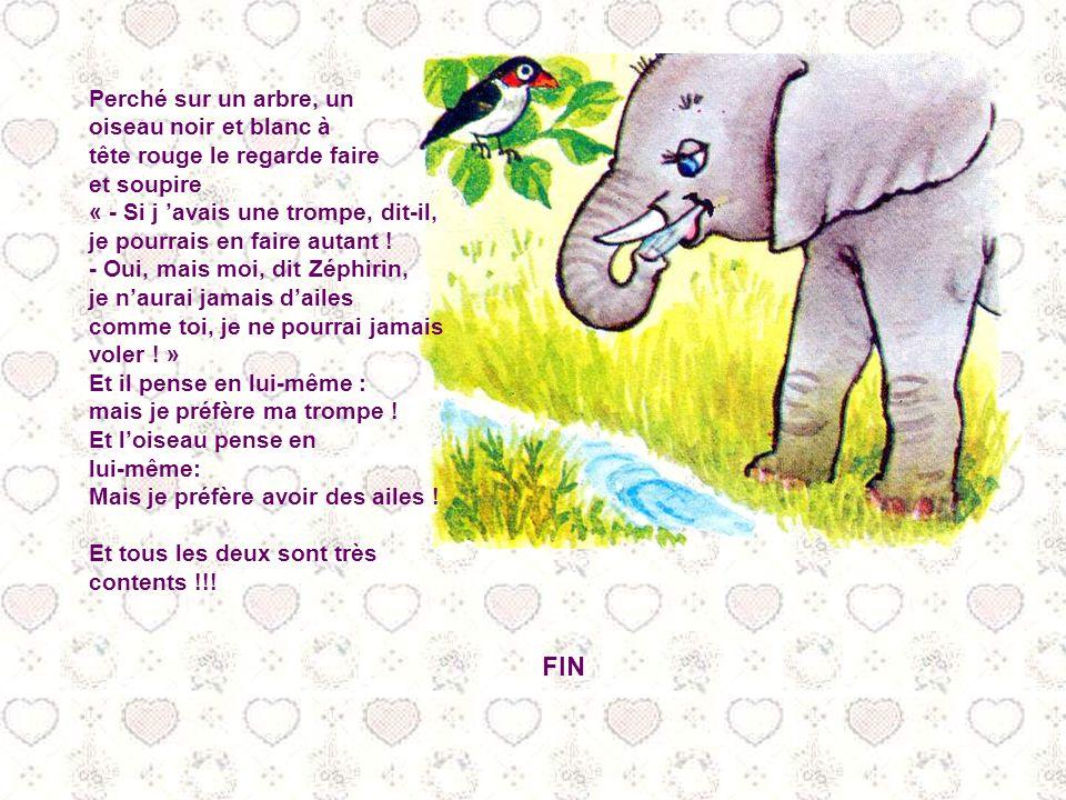 Alors, Zéphirin quitte sa maman, se faufile au milieu des lourdes masses des oncles et des tantes éléphants, et se dirige vers un ruisseau qui court s
