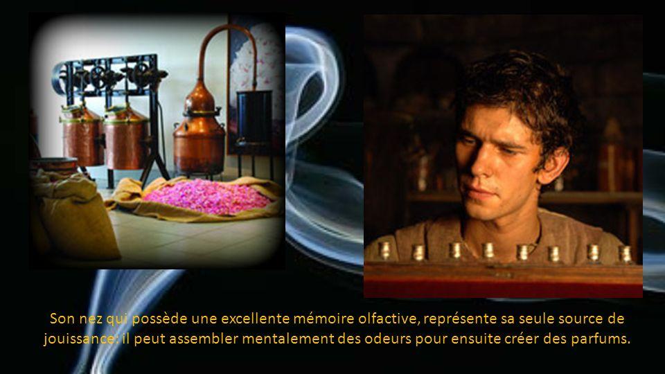 Son odorat extrêmement développé reconnaît les odeurs les plus imperceptibles et les décortique en chaque segment d'arôme.