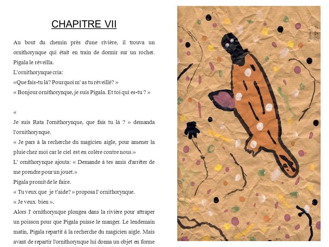 CHAPITRE VII Au bout du chemin près d'une rivière, il trouva un ornithorynque qui était en train de dormir sur un rocher. Pigala le réveilla. L'ornith