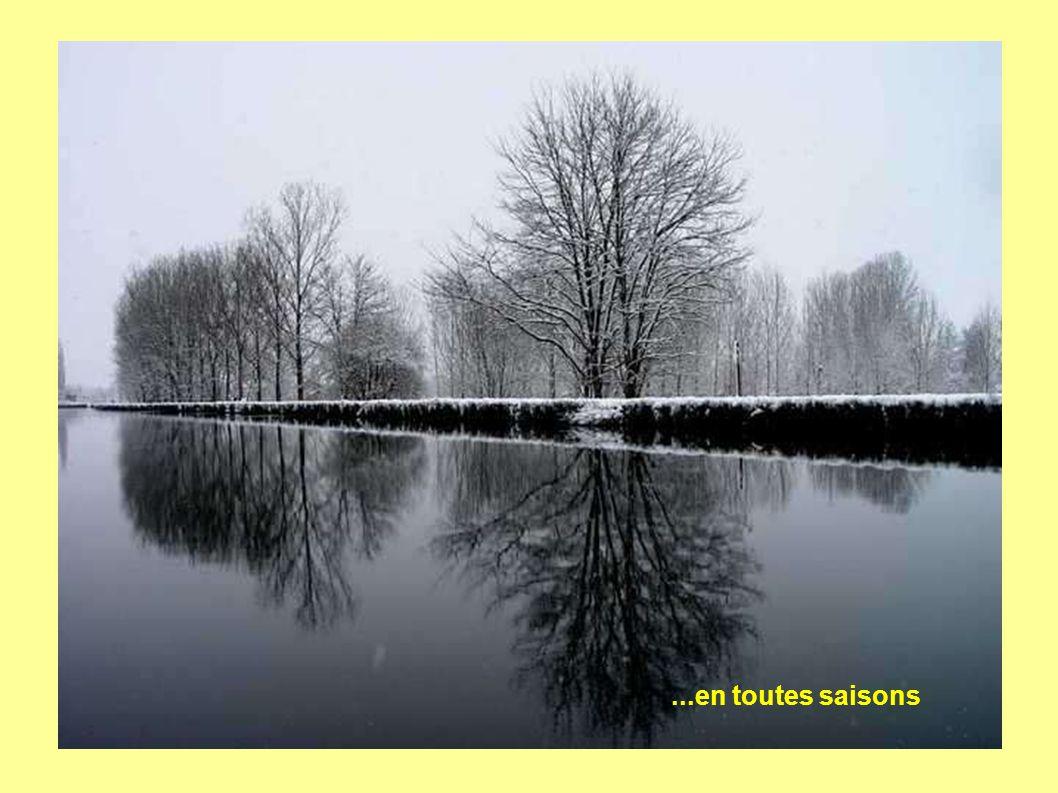 ...en toutes saisons