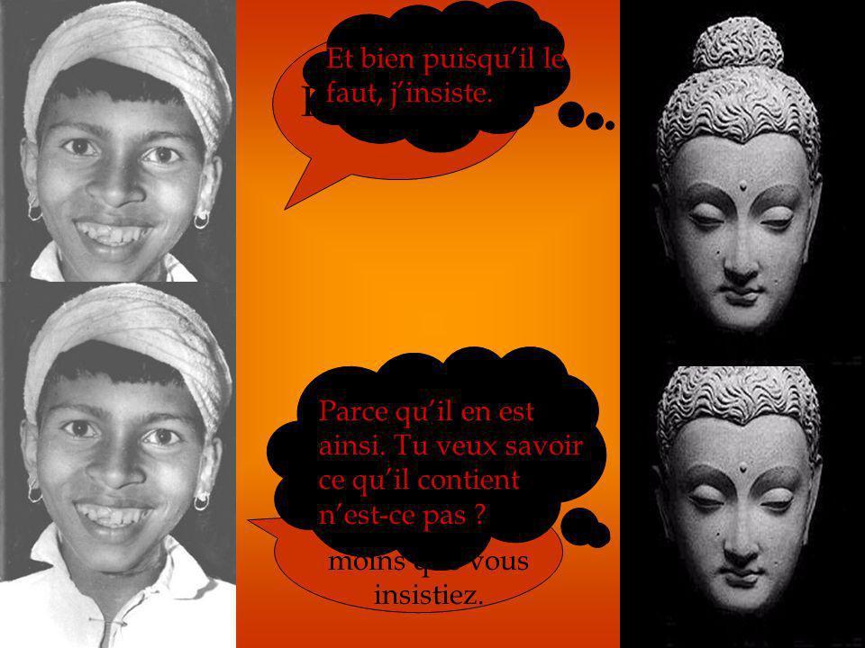Le premier discours du Bouddha : « La mise en marche de la roue de lenseignement » Dialogue entre Rajul (un jeune indien prometteur) et Bouddha. M. Bo