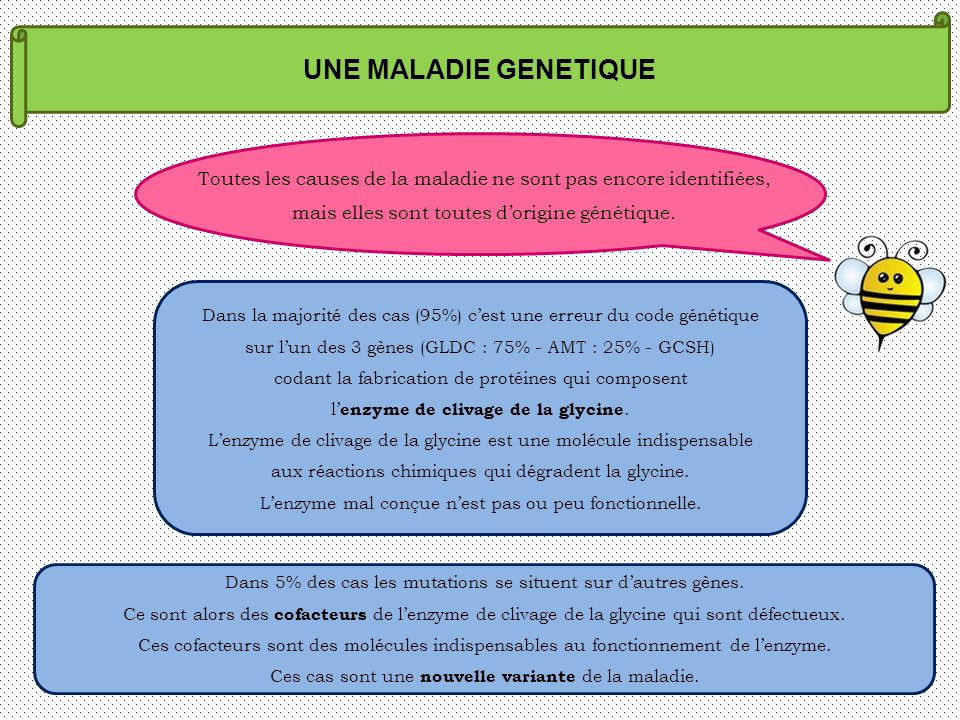 UNE MALADIE GENETIQUE Toutes les causes de la maladie ne sont pas encore identifiées, mais elles sont toutes dorigine génétique. Dans la majorité des