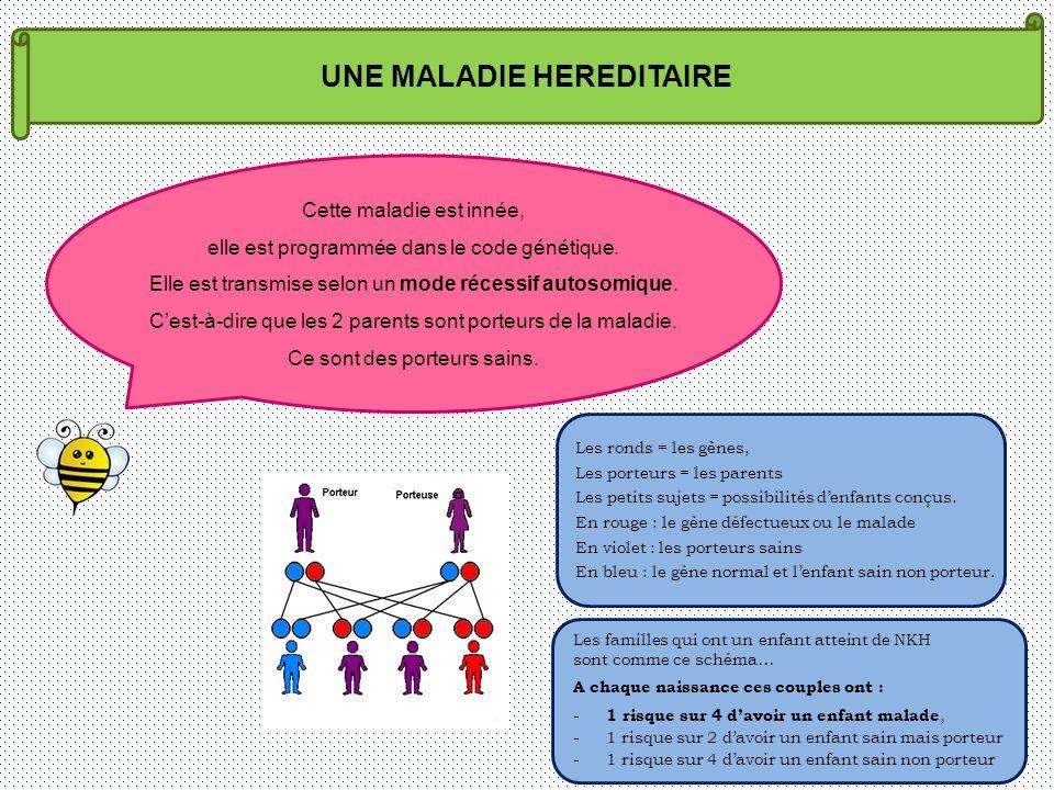 UNE MALADIE HEREDITAIRE Les ronds = les gènes, Les porteurs = les parents Les petits sujets = possibilités denfants conçus. En rouge : le gène défectu