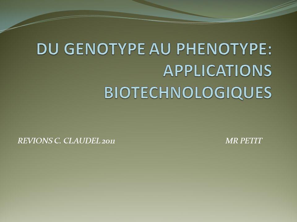 Relations entre génotype et phénotype On appelle génotype lensemble des allèles des gènes dun individu.