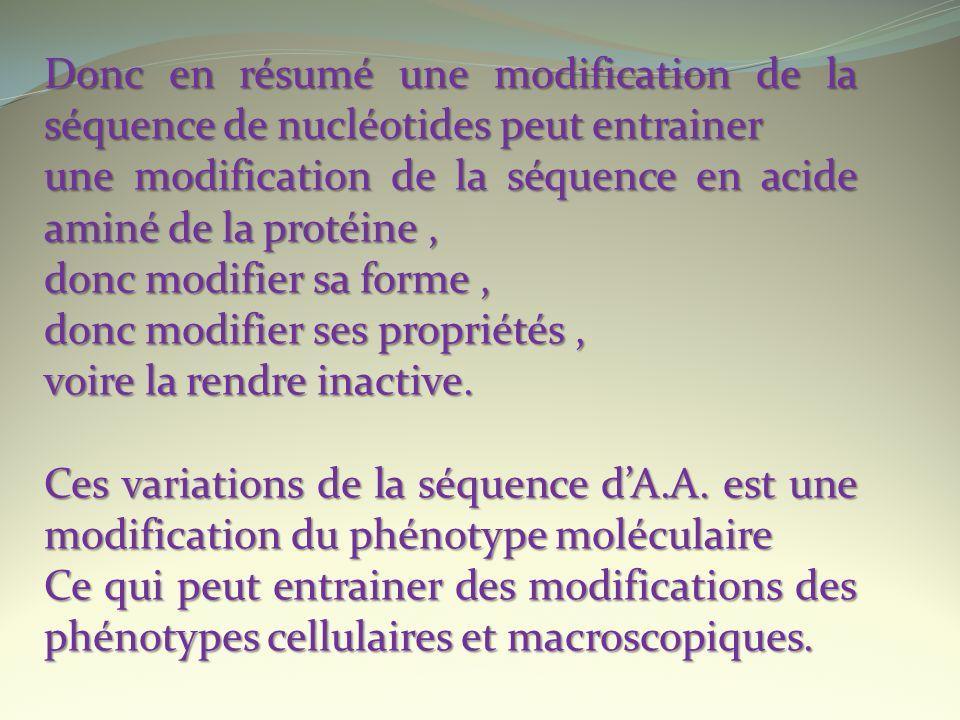 Donc en résumé une modification de la séquence de nucléotides peut entrainer une modification de la séquence en acide aminé de la protéine, donc modif