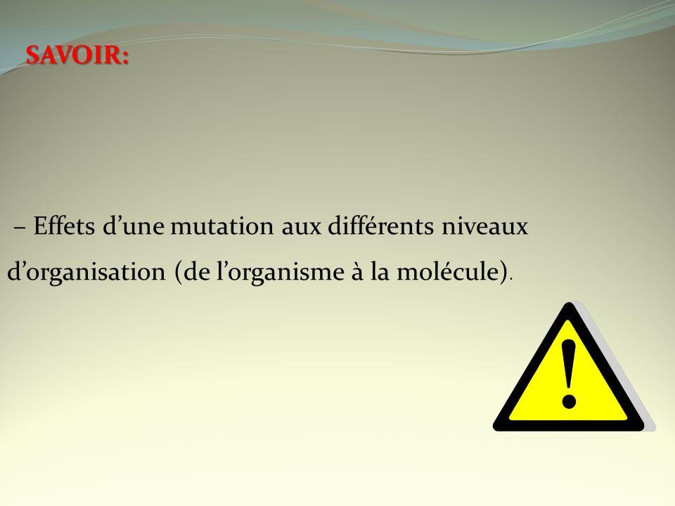 SAVOIR: – Effets dune mutation aux différents niveaux dorganisation (de lorganisme à la molécule).