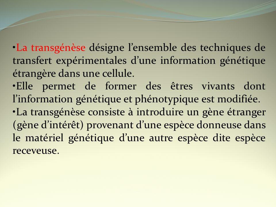 La transgénèse désigne lensemble des techniques de transfert expérimentales dune information génétique étrangère dans une cellule. Elle permet de form