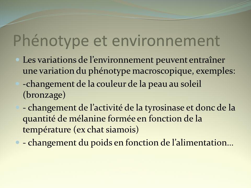Phénotype et environnement Les variations de lenvironnement peuvent entraîner une variation du phénotype macroscopique, exemples: -changement de la co